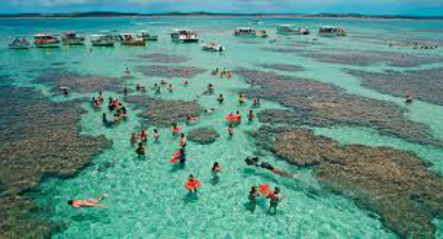 marlei-turismo-marleiturismo-maceio-maragogi-piscinas-naturais.jpg