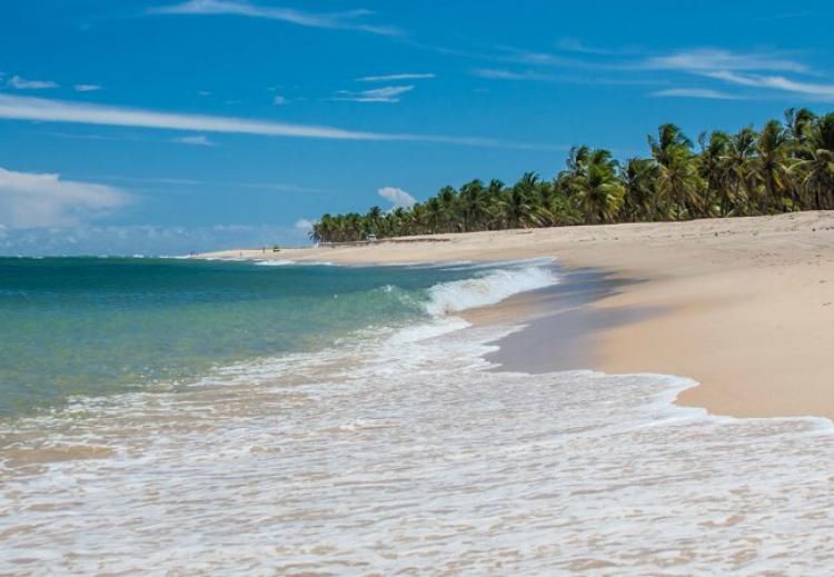 marlei-turismo-marleiturismo-maceio-praia.jpg